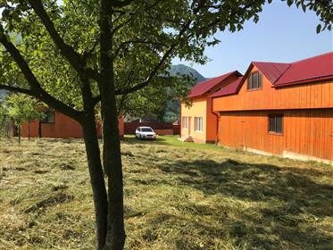 Vand proprietate, doua case, magazie, teren 1049mp si padure 4172mp