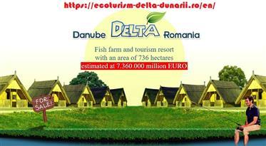 Vindem companii de investitii cu 736 ha in Delta Dunarii, Romania