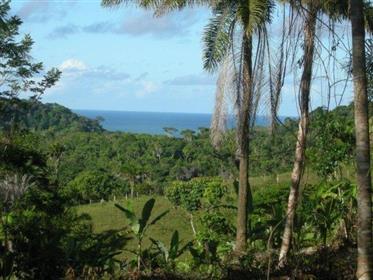 Έργο πολυκατοικία, δάσος και θάλασσα-χερσαία γη