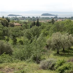 Casa de campo velha nas hortaliças com ele a grande vista no Lago Trasimeno.