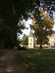 Andel i Chateau Arc en Barrois