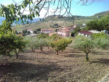 Βίλα με εξάρτηση Acquaviva Πλατάνη Αγροία Σικελία