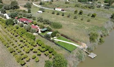 Bungalow on the Guadiana River