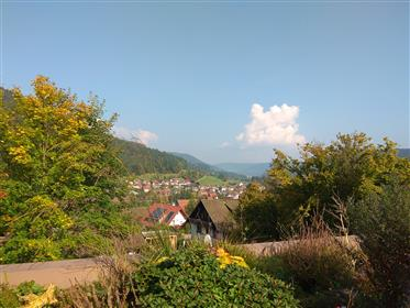 Black Forrest Appartement with wonderful view to sell