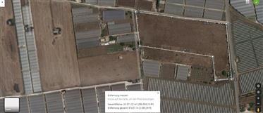 Terreni agricoli in vendita