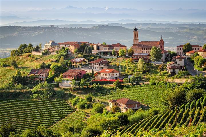Treiso et vignobles des Langhe, Piémont